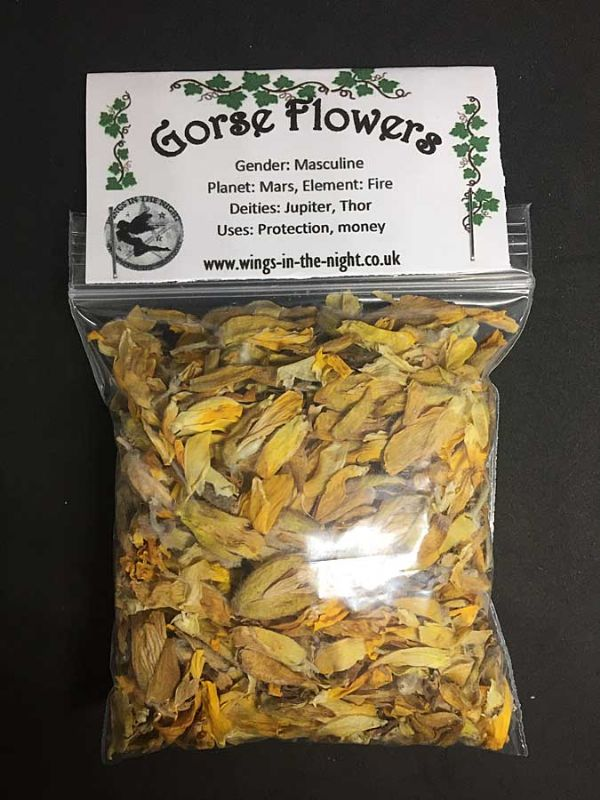 GORSE Dried Flowers - Protection, Money